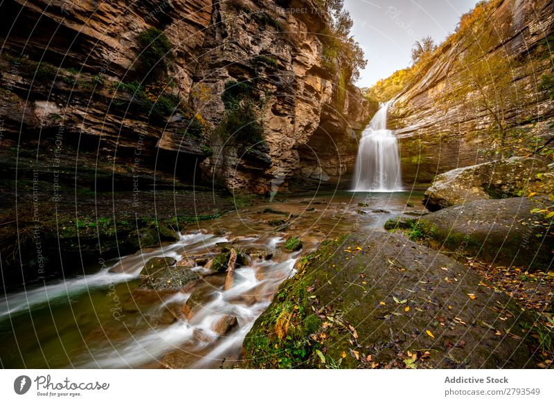 Waterfall in the middle of the mountain Forest Nature River Landscape Park Autumn Vacation & Travel Green Beautiful Background picture Mountain Stream scenery