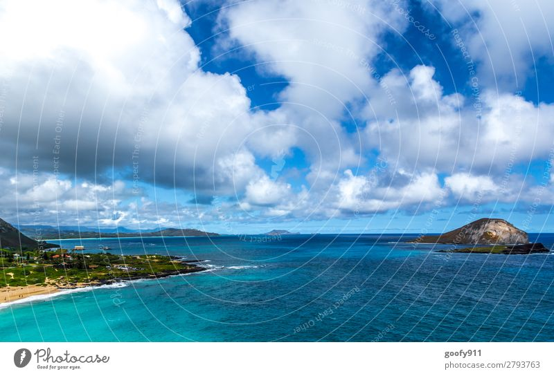 Sky Vacation & Travel Nature Water Landscape Ocean Clouds Far-off places Beach Coast Tourism Freedom Trip Dream Waves Island