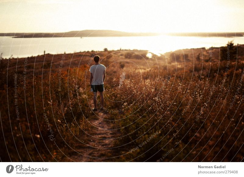summer sun Relaxation Vacation & Travel Trip Adventure Far-off places Freedom Summer Summer vacation Sun Human being Masculine Man Adults 1 18 - 30 years