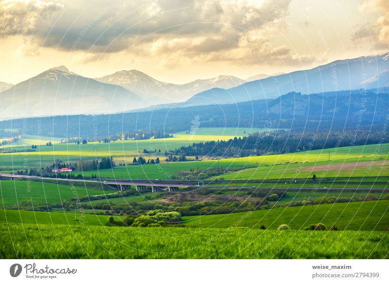 Picturesque green fields and meadow landscape Sky Vacation & Travel Nature Summer Green Landscape Tree Calm Forest Far-off places Mountain Autumn Spring Natural