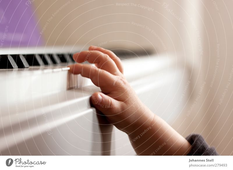 Human being Child Hand Playing Gray Music Art Infancy Flat (apartment) Study Touch Education Curiosity Violet Toddler Piano