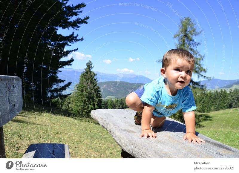 Human being Child Nature Vacation & Travel Beautiful Summer Sun Forest Landscape Mountain Warmth Boy (child) Dream Infancy Hiking Tourism