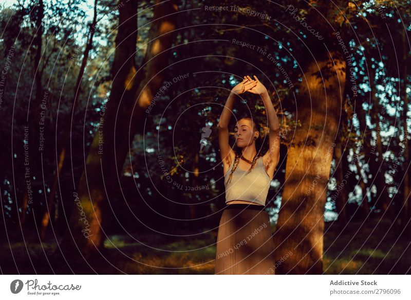 Young woman in majestic forest Woman Forest Calm Harmonious Nature Lifestyle Youth (Young adults) Landscape
