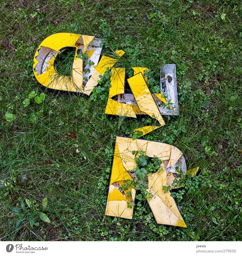 Old Green Yellow Meadow Characters Broken Transience Bizarre Neon sign