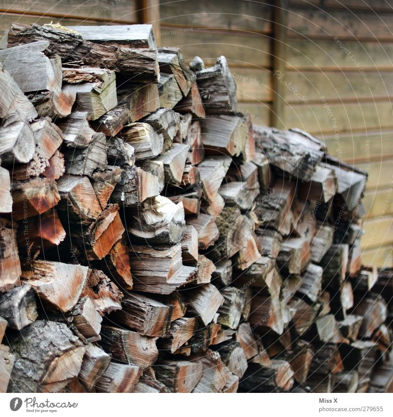 Wood before the ... Dry Brown Firewood Branch Tree trunk Heap Wooden board Wooden hut Colour photo Exterior shot Pattern Structures and shapes Deserted