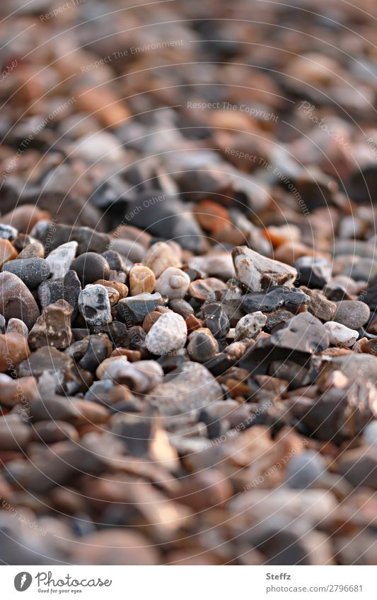 beach stones Environment Nature Beach Pebble beach Stone Sharp-edged Natural Beautiful Many Brown Attentive Versatile Discovery Flotsam and jetsam Blur Beige