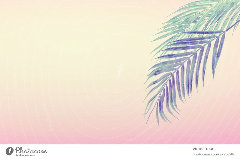 Summer background with tropical palm leaves Style Design Vacation & Travel Summer vacation Beach Nature Plant Yellow Pink Background picture Sunset Palm frond