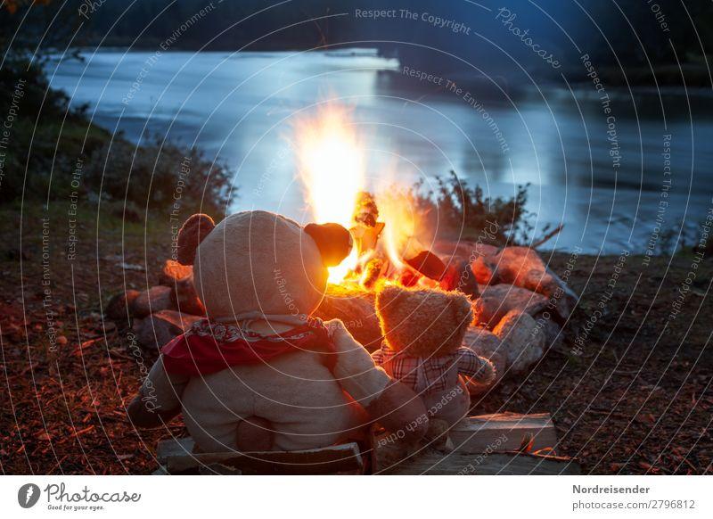 Time at the campfire Friendship teddy Camping Fire Fleming Heat light Hot wood Night Fireside Orange black Nature warm Firewood Light surge smoke Yellow Coal
