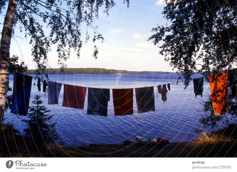 Large laundry Wellness Life Harmonious Well-being Vacation & Travel Tourism Adventure Freedom Environment Nature Landscape Plant Water Sky Clouds Summer Weather