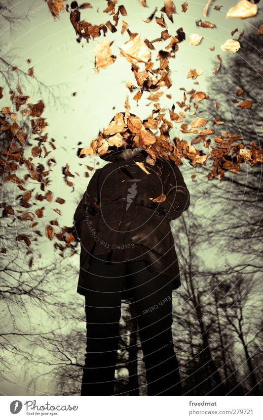 autumn Human being Feminine Young woman Youth (Young adults) Woman Adults 1 Nature Clouds Storm clouds Autumn Bad weather Wind Rain Coat Fur coat Cold Gloomy