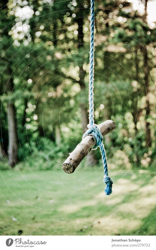 hanging sticks Environment Nature Sun Sunlight Beautiful weather Garden Park Emotions Contentment Movement Forest Wooden pole Rope Swing Hang Suspended Green