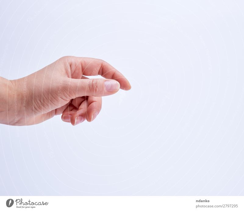 hand showing gesture of holding an object Business Human being Woman Adults Arm Hand Fingers 18 - 30 years Youth (Young adults) To hold on White Idea