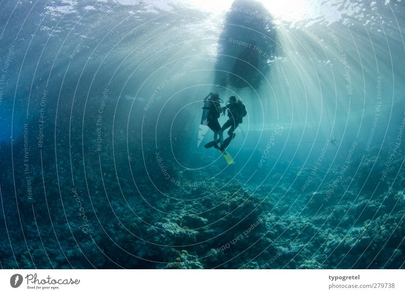 Human being Blue Water Vacation & Travel Summer Ocean Waves Tourism Adventure Dive Summer vacation Turquoise Diver Egypt Beam of light Coral reef