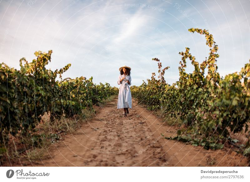 Young woman walking in a path in the middle of a vineyard Winery Vineyard Woman Bunch of grapes Walking Organic Lanes & trails Harvest Happy Agriculture Green