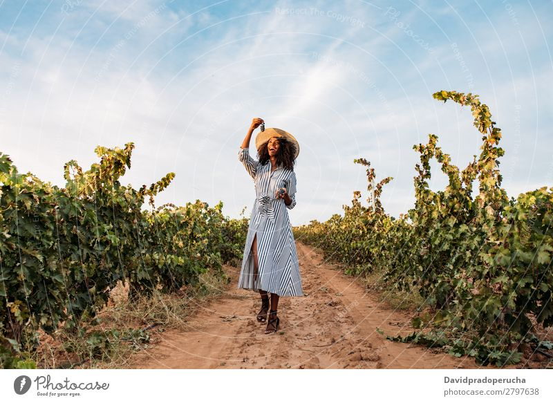 Young woman walking in a path in the middle of a vineyard Winery Vineyard Woman Bunch of grapes Walking Lanes & trails Organic Harvest Happy Agriculture Green