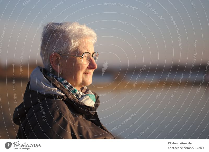 Senior looks into the distance Human being Feminine Female senior Woman Grandmother Senior citizen Life Face 1 60 years and older Environment Nature Landscape