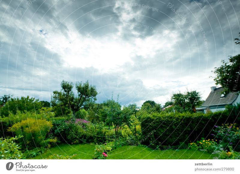 garden Leisure and hobbies Adventure Far-off places Garden Environment Nature Landscape Plant Animal Clouds Storm clouds Summer Climate Climate change Weather