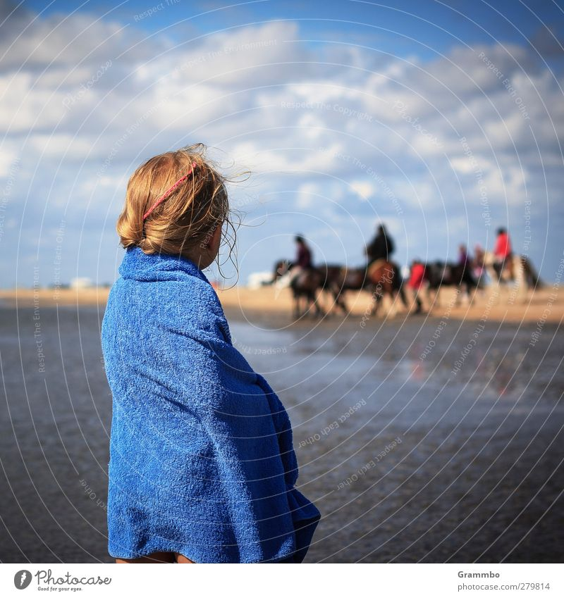 girl's dream Feminine Child Girl 1 Human being Coast Horse Group of animals Longing Beach Clouds Towel Ride Colour photo Exterior shot Day