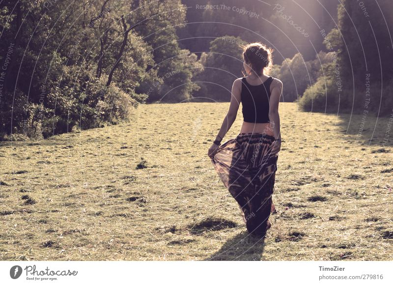 Human being Nature Youth (Young adults) Beautiful Summer Tree Sun Forest Landscape Meadow Feminine Young woman Grass Movement Freedom Art