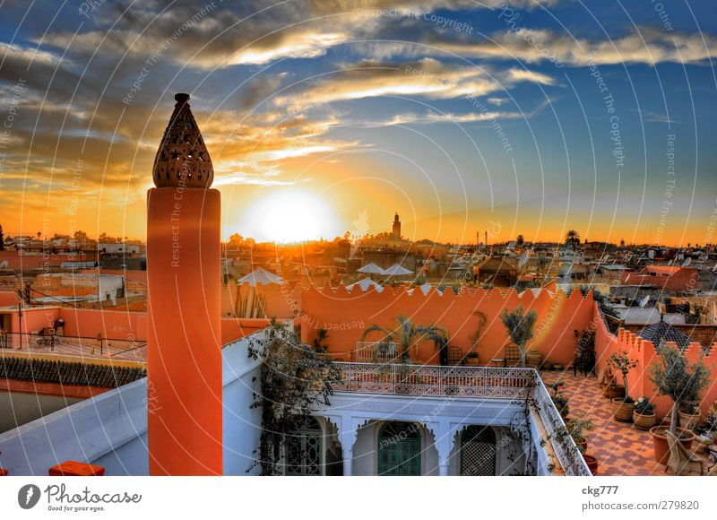 Above the roofs of Marrakech Town Old town House (Residential Structure) Roof Colour Living or residing marrakech Near and Middle East Colour photo