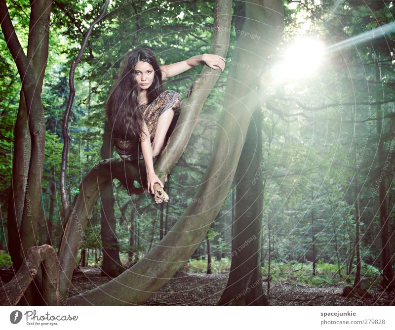 into the light Human being Feminine Young woman Youth (Young adults) 1 18 - 30 years Adults Sun Tree Park Virgin forest Observe Looking Exceptional Exotic