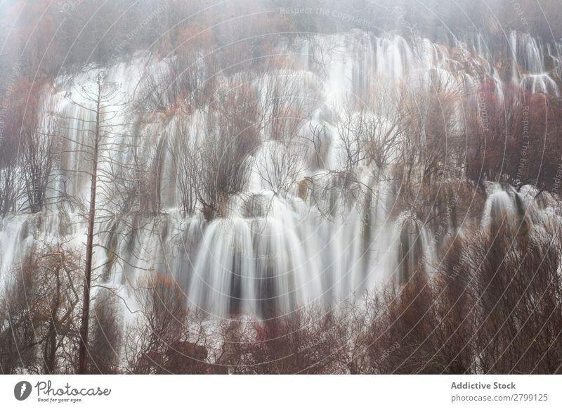 Wonderful waterfall near tree Waterfall Wild Spain Cuenca Tree Stream Height