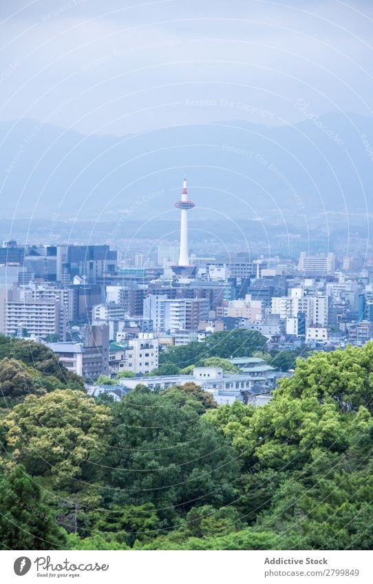 View of forest and modern city City Forest Japan Modern Tree Green Sky