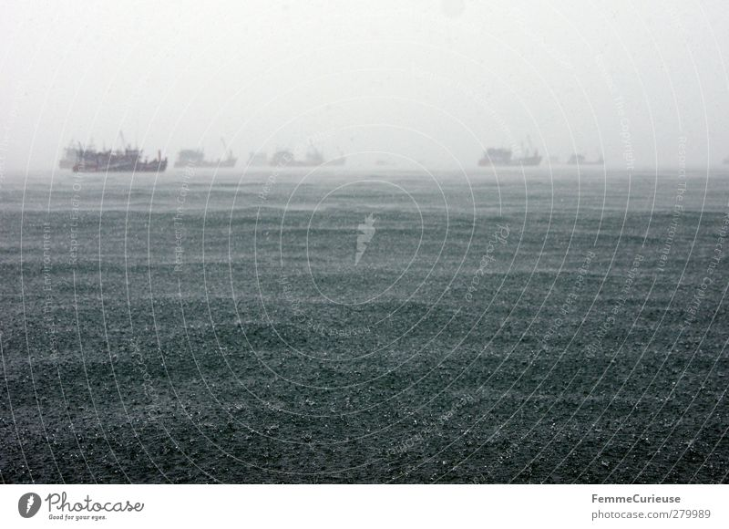 Stormy sea. Environment Nature Elements Water Drops of water Climate Climate change Weather Bad weather Wind Gale Fog Rain Thunder and lightning Lightning