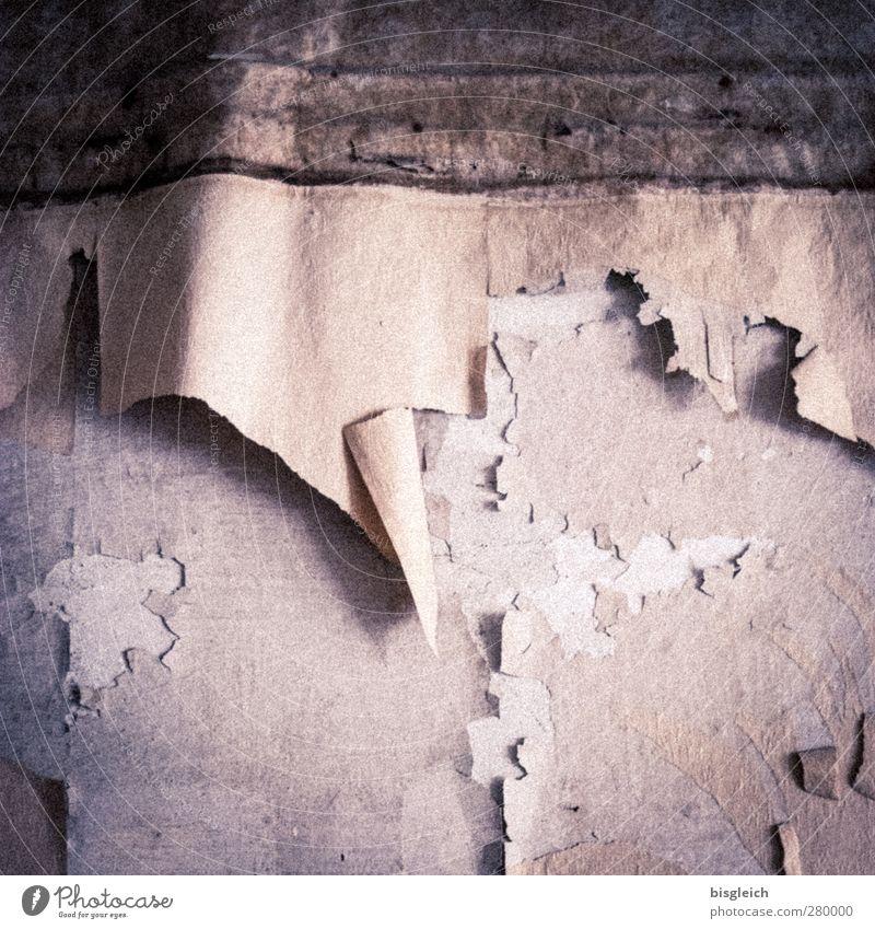 Old Wall (building) Gray Wall (barrier) Pink Broken Gloomy Wallpaper Trashy Plaster Ruin