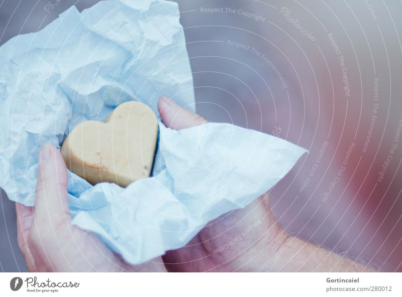 Comme un oiseau je vole Human being Man Adults Partner Hand Fingers 1 Packaging Heart Love Gift Gift wrapping Souvenir Give Colour photo Shallow depth of field