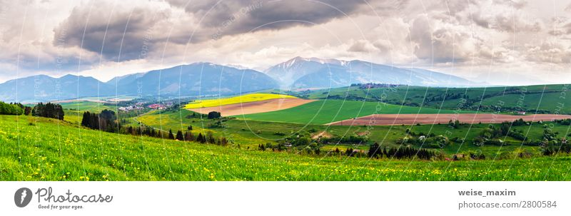 Spring storm in mountains panorama. Dandelion meadow. Vacation & Travel Tourism Trip Adventure Far-off places Freedom Summer Mountain Living or residing