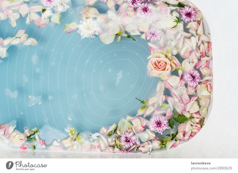 bath filled with blue bubble water, flowers and petals Aromatic Art Swimming & Bathing Bathroom Bathtub Beauty Photography Blossom Blue Bomb Bouquet Clean