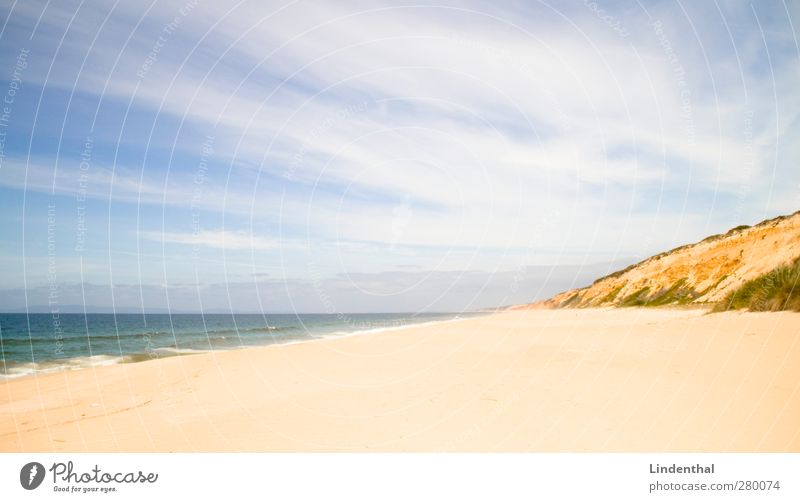 Beach in Portugal Vacation & Travel Far-off places Sun Waves Nature Sand Sky Summer Beautiful weather Rock Coast Happy Perspective Atlantic Ocean Colour photo
