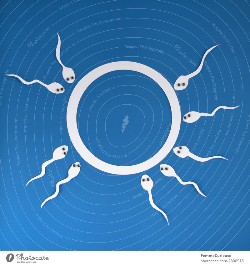 Reproduction - Sperm with wobbly eyes swimming to egg cell Sign Sex Sexuality Paper Low-cut White Blue Egg cell Eyes Fertilization Fertile Pregnant Propagation