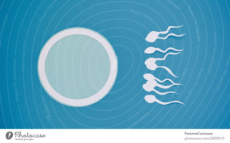 Reproduction - Sperm swimming to egg cell Sign Sex Sexuality Egg cell Low-cut Paper White Blue Symbols and metaphors Fertilization Childhood wish Pregnant