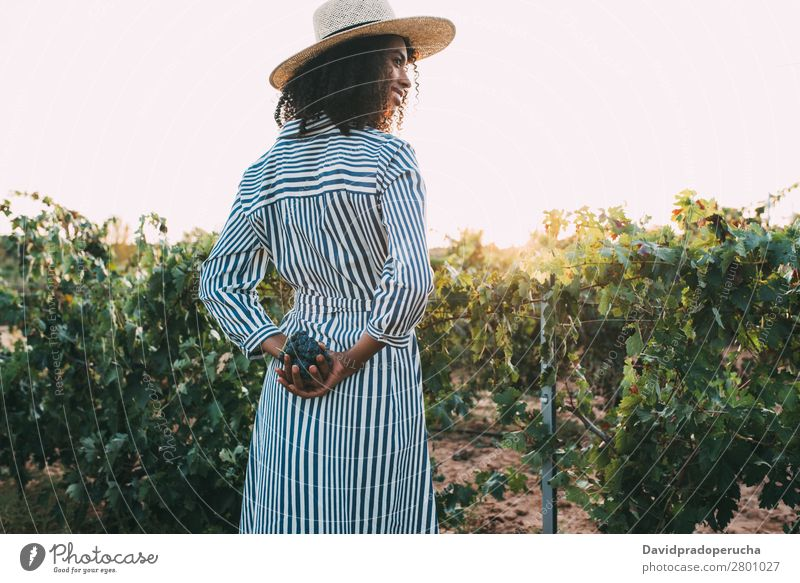Woman standing in a path in the middle of a vineyard Winery Vineyard Bunch of grapes Stand Organic Harvest Happy Agriculture Green Accumulation Rural tasting