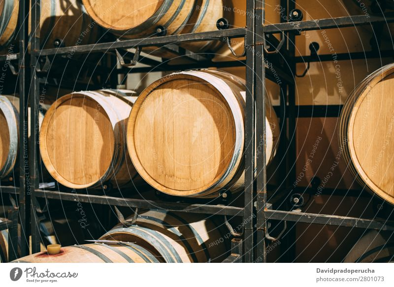 Wood wine barrels stored in a winery on the fermentation process Winery Cellar Vintage oak Storage Drinking Beverage Keg flavor Production Line Factory