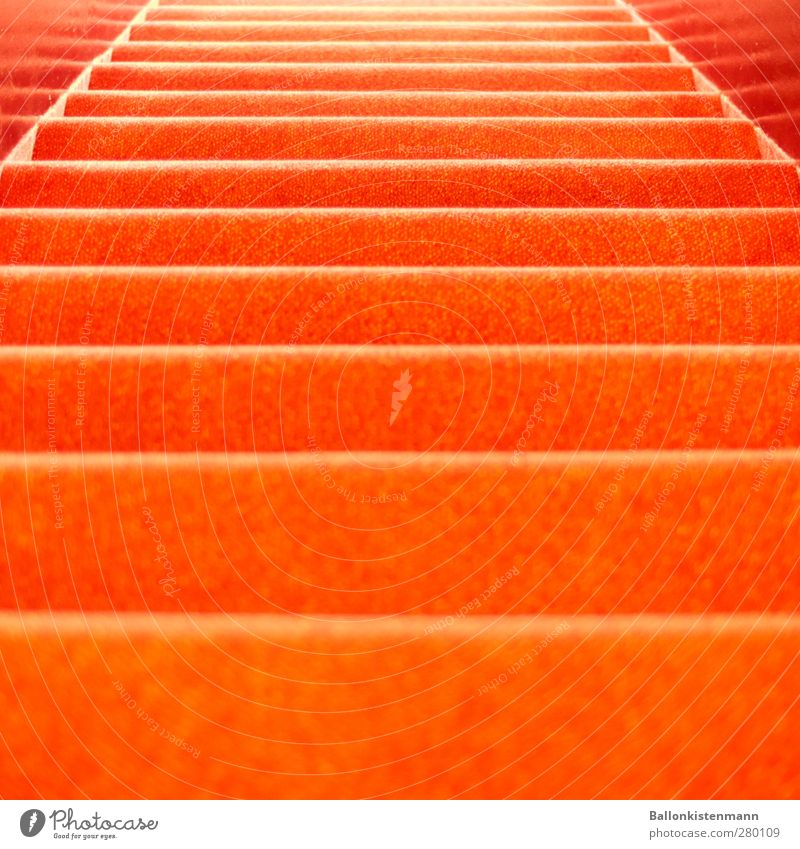 A tree-carpet! Flat (apartment) Interior design Entertainment Event Architecture Theatre Stairs Retro Trashy Orange Red Red carpet Hotel Colour photo