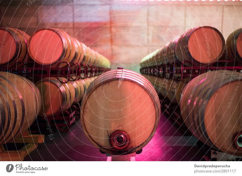 Wine barrels stored in a winery on the fermentation process Winery Cellar Keg Wood Vintage oak Storage Drinking Beverage flavor Glass Production Line Factory