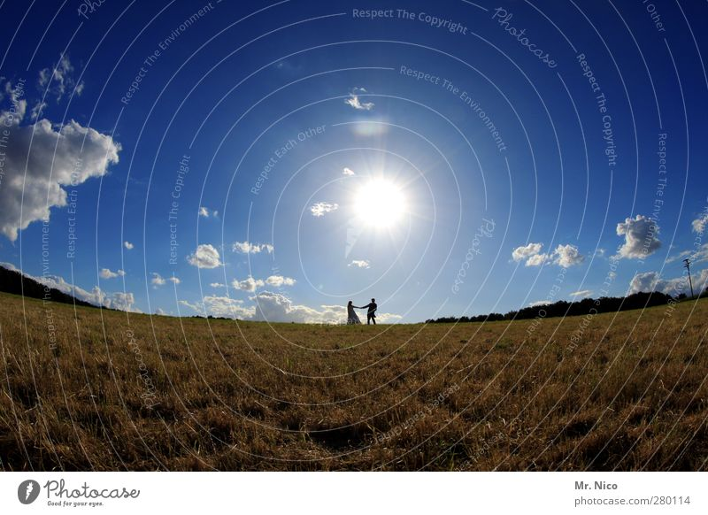 Human being Sky Nature Summer Sun Joy Clouds Landscape Environment Love Meadow Freedom Happy Couple Field Climate