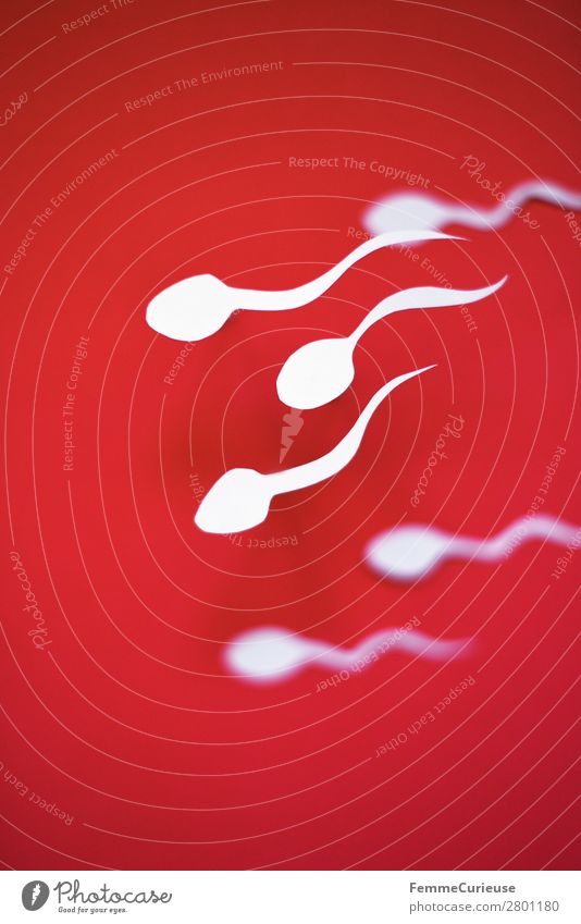 Swimming sperm on red background Sign Sex Sexuality Family planning Childhood wish Sperm Fertile Red White Paper Low-cut Symbols and metaphors Illustration