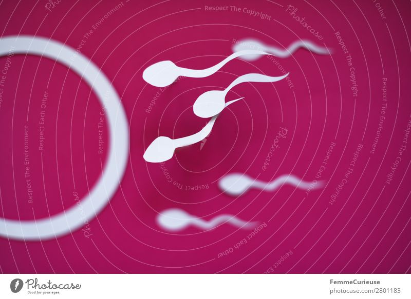 Reproduction - Sperm swimming to egg cell Sign Sex Sexuality Egg cell Illustration Graph Pink Paper Low-cut Childhood wish Pregnant Propagation Fertile