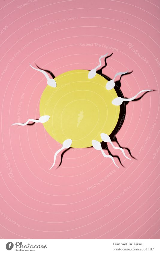 Reproduction - Sperm swimming to egg cell Sign Sex Sexuality Egg cell Fertilization Biology Family planning Propagation Pink Yellow White Illustration