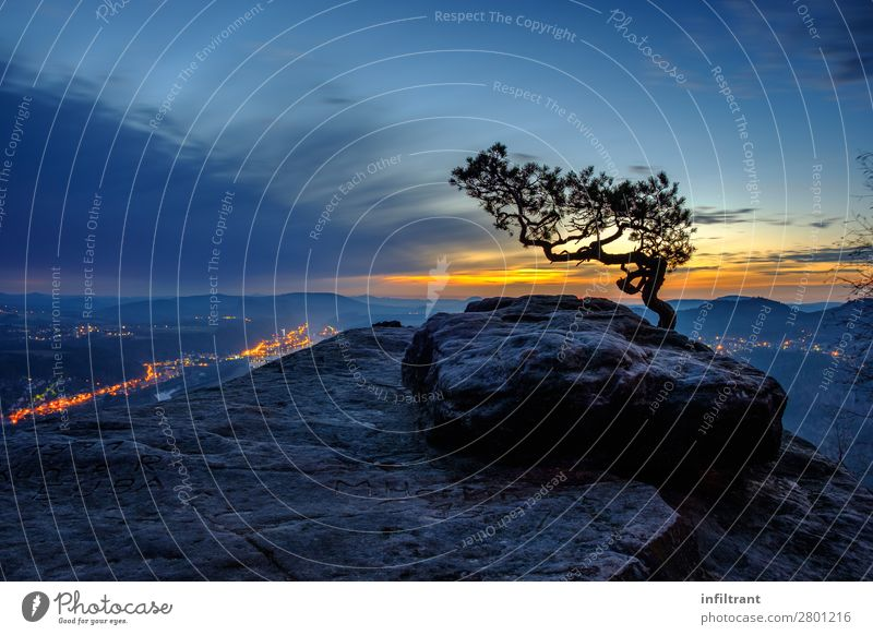 Sky Vacation & Travel Nature Blue Beautiful Landscape Tree Relaxation Calm Mountain Black Yellow Cold Natural Orange Rock