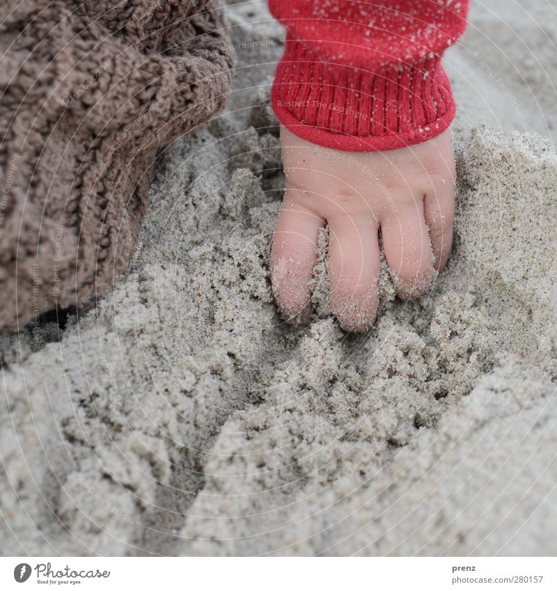 child's hand Human being Feminine Child Toddler Girl Hand Fingers 1 Brown Gray Red Sand Beach Muding Colour photo Exterior shot Close-up Copy Space bottom Day