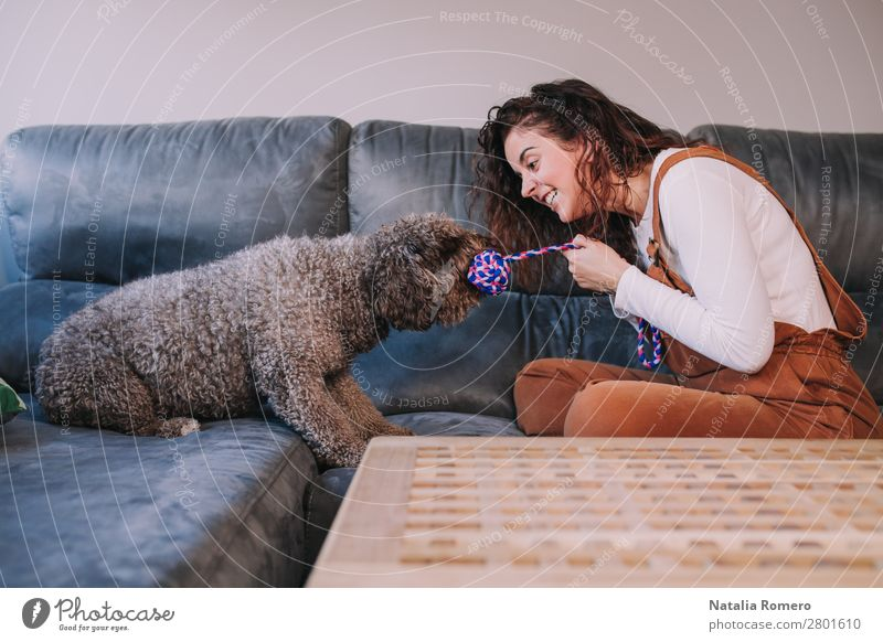a dog and its due play on a sofa with a strong rope Woman Dog Beautiful House (Residential Structure) Relaxation Animal Joy Lifestyle Adults Love Funny Emotions