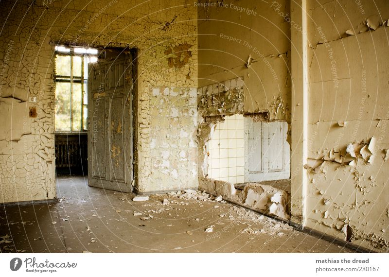 Old Beautiful Calm Window Wall (building) Architecture Dye Wall (barrier) Building Door Exceptional Esthetic Gloomy Uniqueness Factory Derelict
