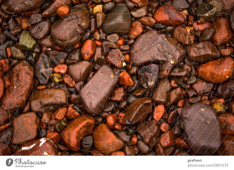 Wet Red Pepples At Atlantic Coast in Scotland arrangement background beach beautiful brown close closeup coast coastal colorful concept decorative design detail