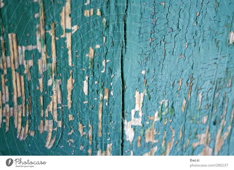 Old Wood Dye Door Transience Derelict Turquoise Crack & Rip & Tear Flake off Layer of paint