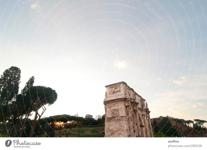 Tree Sun Winter Architecture Esthetic Italy Manmade structures Historic Tourist Attraction Capital city Rome Old town Stone pine Cypress Constantine Arch